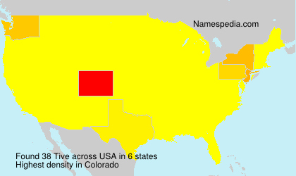 Surname Tive in USA