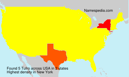 Surname Tufro in USA