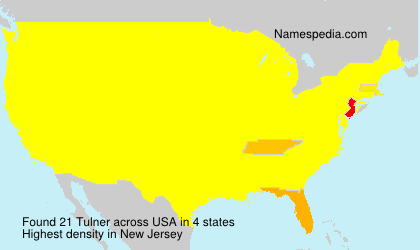 Familiennamen Tulner - USA