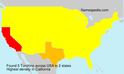 Surname Turchino in USA