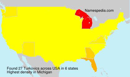 Surname Turkovics in USA