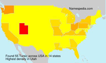 Surname Tursic in USA