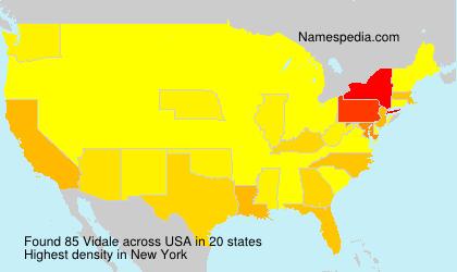 Familiennamen Vidale - USA