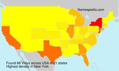 Surname Vidya in USA
