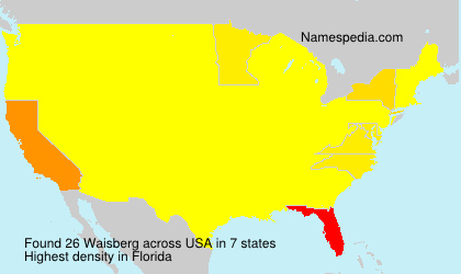 Surname Waisberg in USA