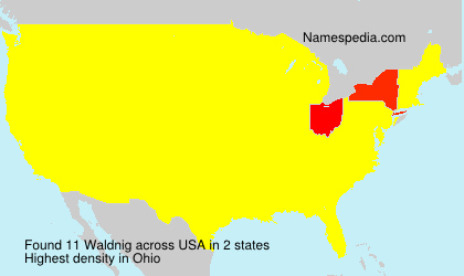 Surname Waldnig in USA