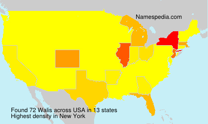 Surname Walis in USA
