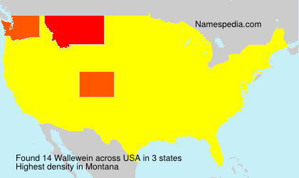 Surname Wallewein in USA