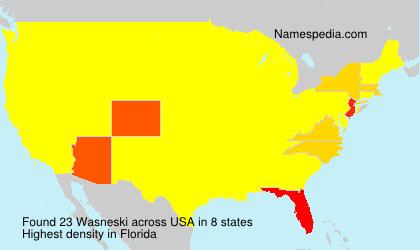 Surname Wasneski in USA
