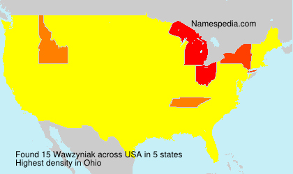 Surname Wawzyniak in USA