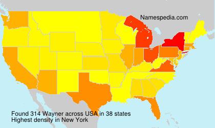 Surname Wayner in USA
