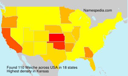 Weiche - USA