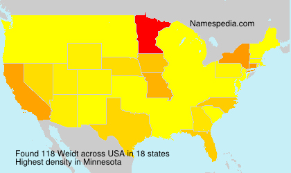 Surname Weidt in USA