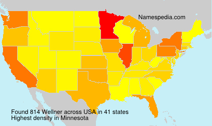 Surname Wellner in USA