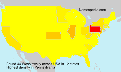 Surname Wesolowsky in USA