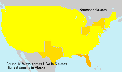 Surname Weys in USA