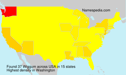 Surname Wiggum in USA