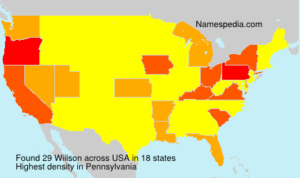 Surname Wiilson in USA