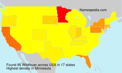 Surname Wildfeuer in USA