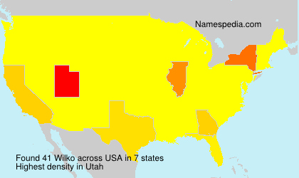 Surname Wilko in USA