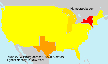 Surname Wilsberg in USA