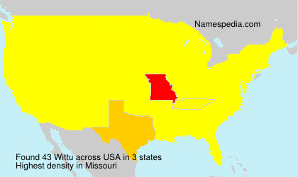 Surname Wittu in USA
