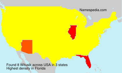 Surname Witusik in USA