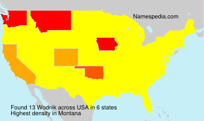 Surname Wodnik in USA