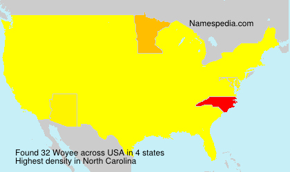 Surname Woyee in USA