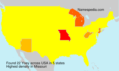 Surname Yoey in USA