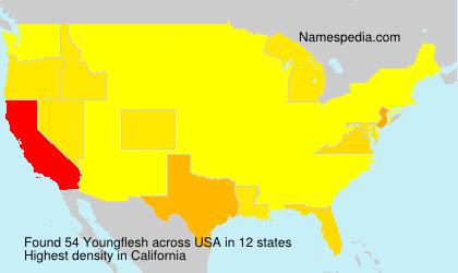 Familiennamen Youngflesh - USA