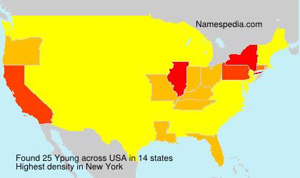 Ypung - USA