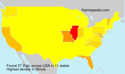 Surname Zigic in USA