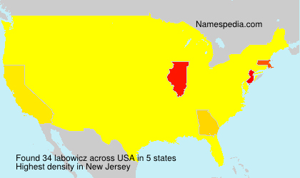 Surname labowicz in USA