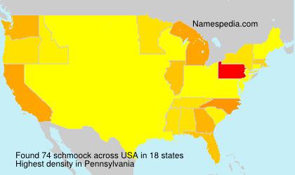 Surname schmoock in USA